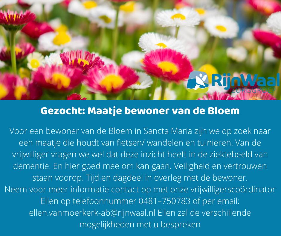 Maatje-de-Bloem.png